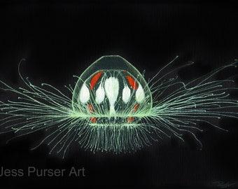Green Jellyfish - Crossota alba - poster - giclee - print