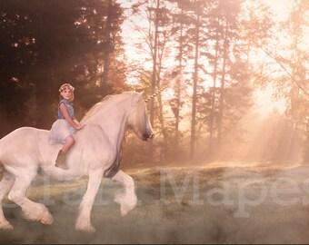 White Unicorn in Field Digital Background