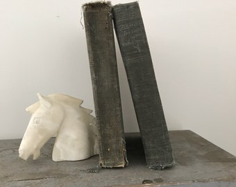 PAIR Linen Books antique washed denim Wallace Nutting bookcase decor