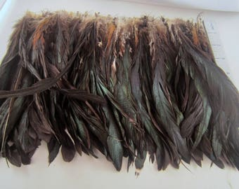Rooster tail Feathers  long feathers natural feathers black feathers 9 inches 30 pcs