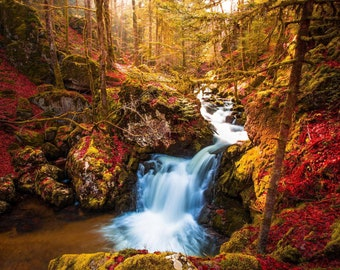 AUTUMN WATERFALL TREES Forest Brown Woods Rocks Calm Landscape Wall Art Canvas Picture Print Various Sizes