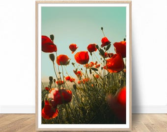 Poppy Flower Print, Instant Download, Digital Art Print, Poppy Poster, Floral Wall Art, Flowers Prints, Modern Photography
