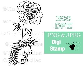 Digital Stamps, Porcupine, Hedgehog, Digistamps, Digi Stamps, Digital Download, Digital Art, Digistamp Shop, Coloring, PNG, PNG Files