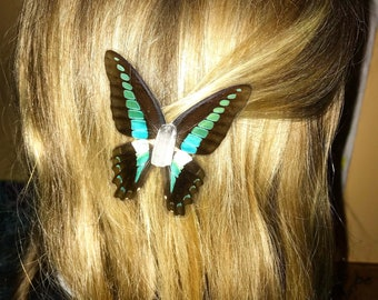 Bixbie Butterfly Barrette