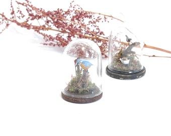 Kingfisher Under Glass Dome - 1/12th dollshouse miniature taxidermy bird