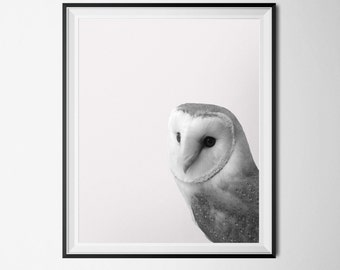 Owl Print, Forest Creature Poster, Barn Owl INSTANT DOWNLOAD, Black and White Photography 16 x 20 Poster, Animal Printable Art, Bird Print