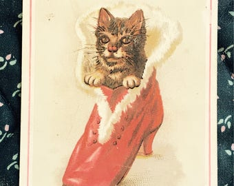Victorian Trade Card 1800s, Little Kitty In Red Fur Shoe, Millers Shoe Store, Wonderful Antique Collectible