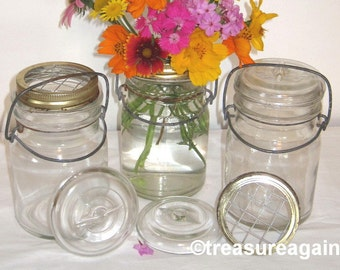 Flower Frog Mason Jar Vases 3 Pint Ball Antique Lightning Jars, Weddings, Garden Flowers, Centerpieces, Mason Jars