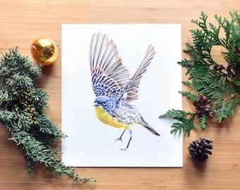 Kirtland's Warbler, Fine Art, Watercolor Painting, Giclee Print, Museum Quality, Bird Lover, North American Bird