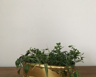 long brass windowsill planter box