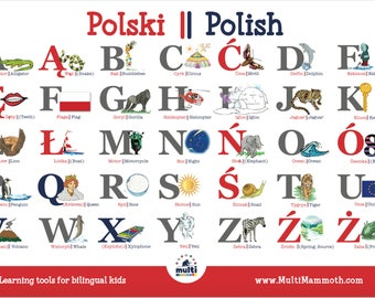Polish English bilingual alphabet