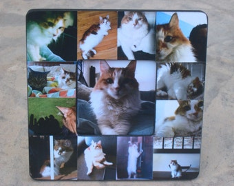 "Pet Memorial Collage Picture Frame, Personalized Pet Frame, Custom Cat Frame, Family Dog Frame, Pet Picture Frame 8"" x 8"", Unique Gift"