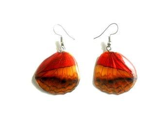 Real Butterfly Wings Earrings Handmade, Natural Jewelry, Boho Earrings, Hippie Earrings, Tribal Earrings, Art Earrings, Jewelry Gift