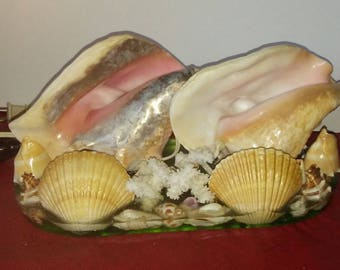 Vintage Conch Sea Shell Lamp