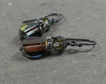 Rainbow Crystal Earrings Raised Disk Oxidized Sterling Silver