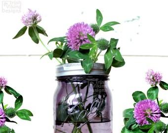 Clover photography,set of 2 prints,fine art photography,red clover,white clover,botanical wall art,flora decor,garden art, green shamrocks