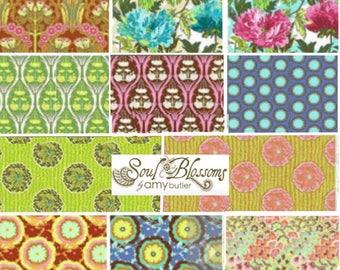 Soul Blossoms by Amy Butler - Fat quarter bundle of 11