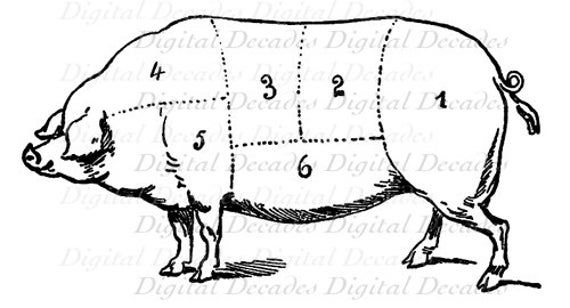 pork pig cochon butcher meat cut chart cooking digital image rh etsy com Pork Cuts Chart Butchering a Hog Cuts of Meat