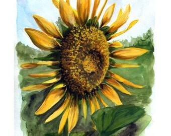 Summer Sunflower 8x10 Art Print - Art by Marcia Furman