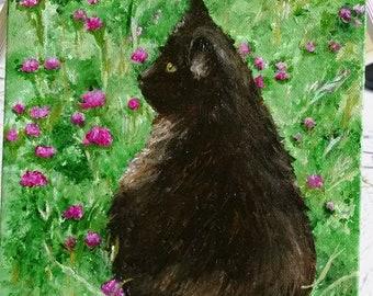 Black Cat in wildflowers