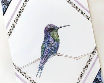 Violet-crowned Woodnymph Giclee Print