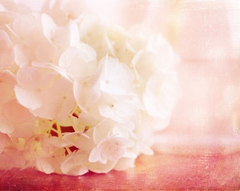 Wall Art - Floral Photography - Valentine - Home Decor - Cottage Chic