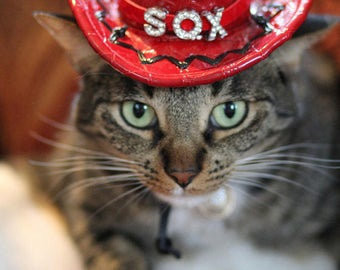 Cat Birthday Hat || Cat Party Hat || Cat Birthday Party Outfit || Cat Cowboy Hat II Personalized Birthday Hat