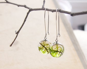 Moss earrings ⇷16mm⇸ Green resin earrings | Real plants jewelry | Green moss jewelry | Nature gift for her | Real moss Resin dangle earring