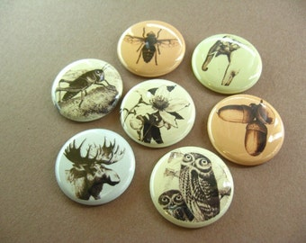 Magnets Seven Animals, Magnabilities Compatible 1179