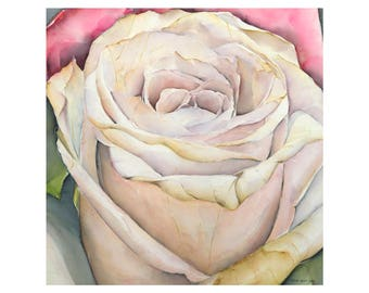 Rose - fine art 30 x 30 cm, numbered and signed. Made from my watercolor