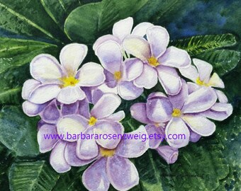 White Flower Print, Flower Wall Art, Beach Decor, Beach Wall Art, Plumeria, Frangapani, Tropical Flower Print, Flower Watercolor, Flower Art