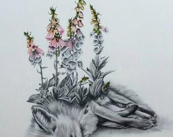 Beautiful Death Fox Fine Art Print