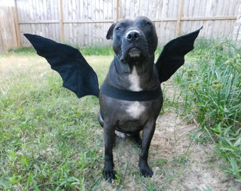 Bat Wings or Dragon wings Dog Halloween Costume - Custom made to fit