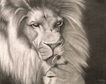 Original Wildlife Lion Graphite Giclee Print 11X14 Matted
