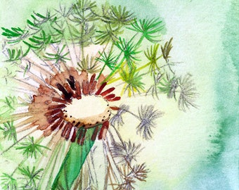 ACEO Limited Edition 1/25- Dandelion, Flower art print of an ACEO original watercolor, Gift idea for nature lovers