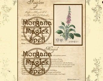 FOXGLOVE MAGICK HERB , Digital Download,  Book of Shadows Page,    Grimoire, Scrapbook, Spells, White Magick, Wicca, Witchcraft, Herb Magic