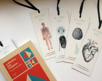 Bookmarks - Anatomy