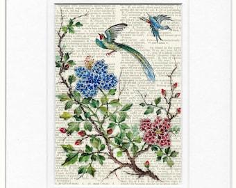 17th century bird print