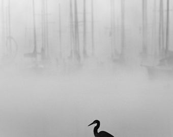 sailboat photography, nautical photography, lake house decor, minimalist, nautical decor, lake, sailboat, sailboats in fog, heron, fog