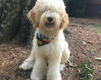 Green Bay Packers NFL Team Spirit Dog Bandana || Classic Tie Pet Scarf || Personalized Puppy Gift || Three Spoiled Dogs
