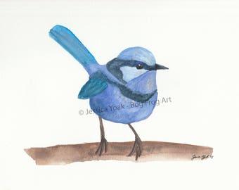 Blue Wren Watercolor Painting