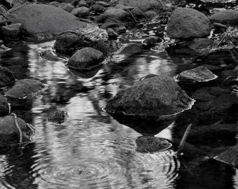 Still but Shallow Waters