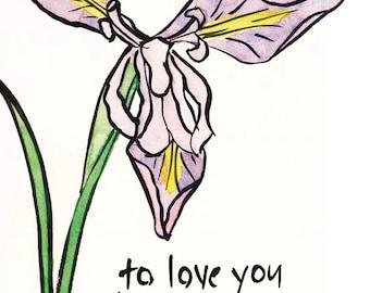 01-105. wild iris art - 8x10 romantic print