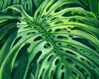 Watercolor painting...MONSTERA MADNESS...monstera leaf...giclee