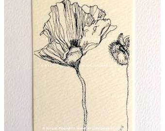 "Fine Art ACEO Print, ""Poppy Study 1"". Poppy Pods, Black and White Drawing, Botannical, Miniature Art"