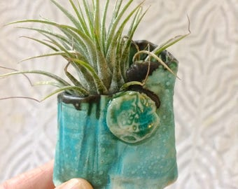 Air Plant Holder, Air Plant Vase, Tiny Vase, tiny planter, Turquoise green planter, organic shape, hobbit planter, hobbit vase,