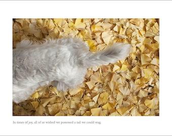 Westie Dog Card - Blank Inside - Congratulations Card - New Baby Card - Engagement Card - Wedding Card - W.H. Auden Greeting Card