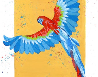 PRINT A5 / Laura the Parrot