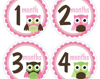 12 Monthly Baby Milestone Waterproof Glossy Stickers - Just Born - Newborn - Weekly stickers available - Design M031-01