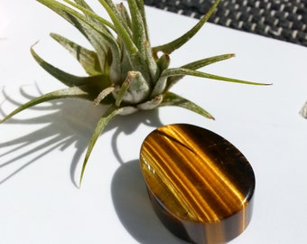 Tiger's Eye Large Oval 35 mm